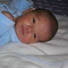 malkoto bebe