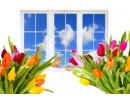 Пролетно настроение у дома