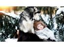 Кучето и детето